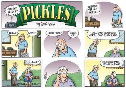 Pickles1 (1)