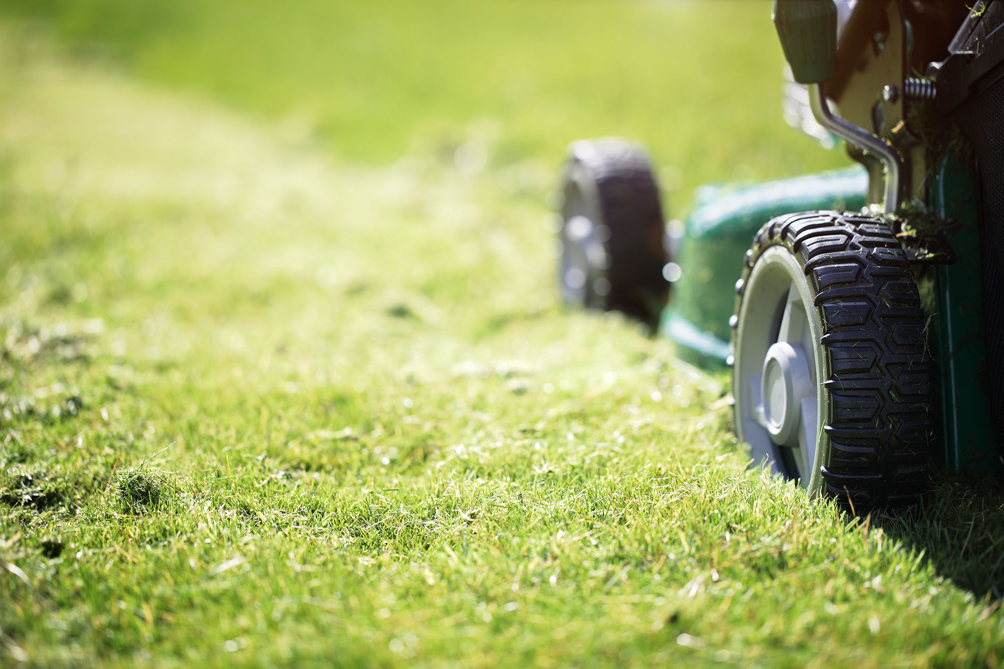Lawn mowers can damage hearing
