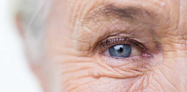 Foods for maintaining healthy eyes