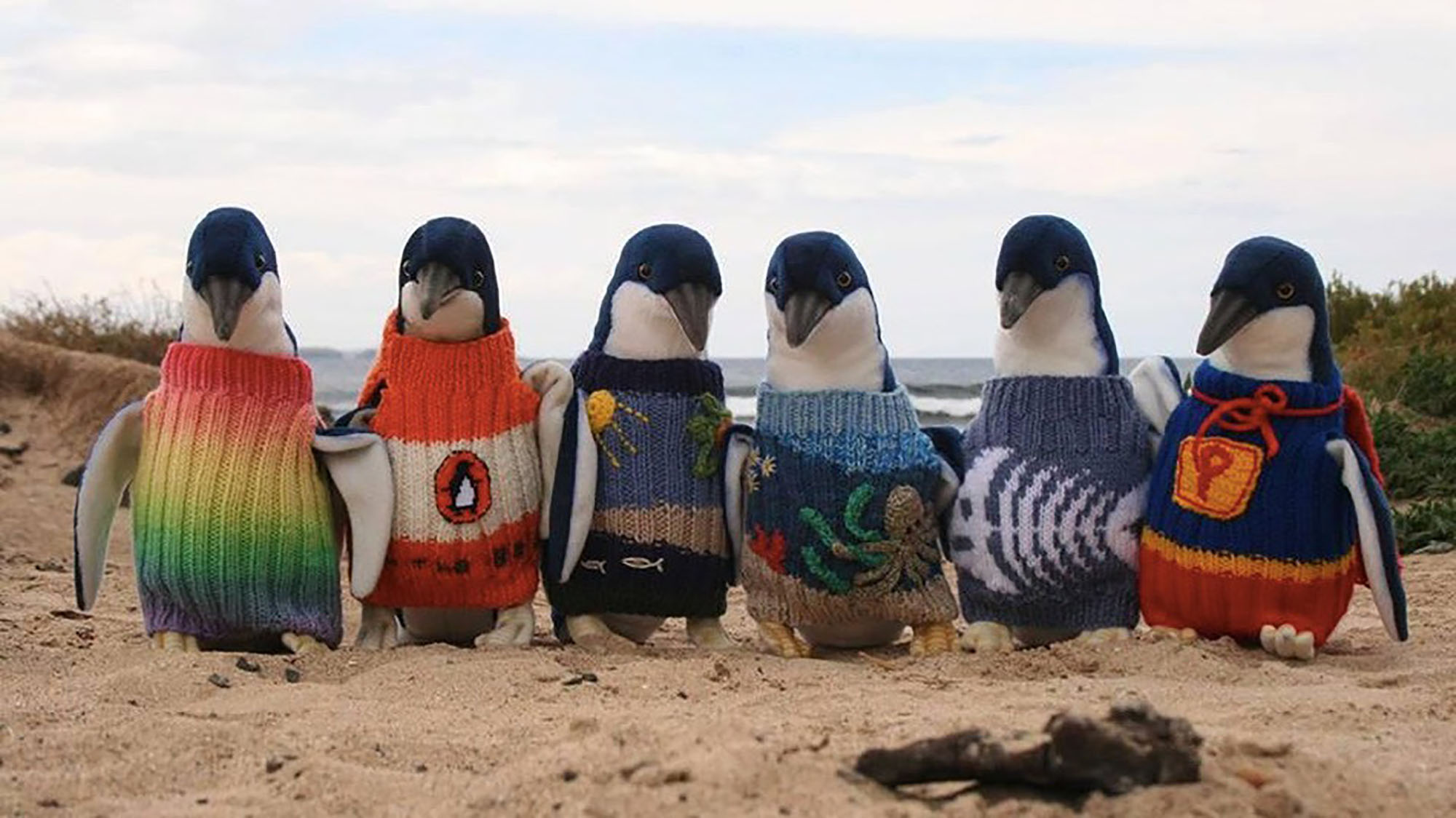 Australia's oldest man knits mini-sweaters for injured penguins