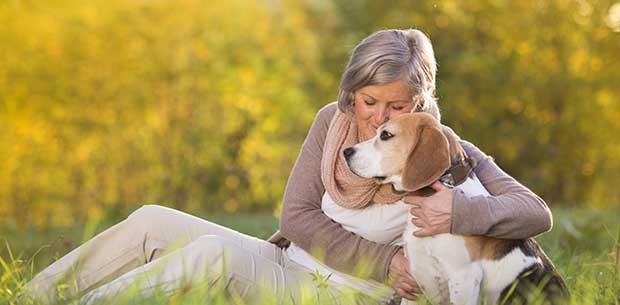 6 ways to boost your pup's wellbeing