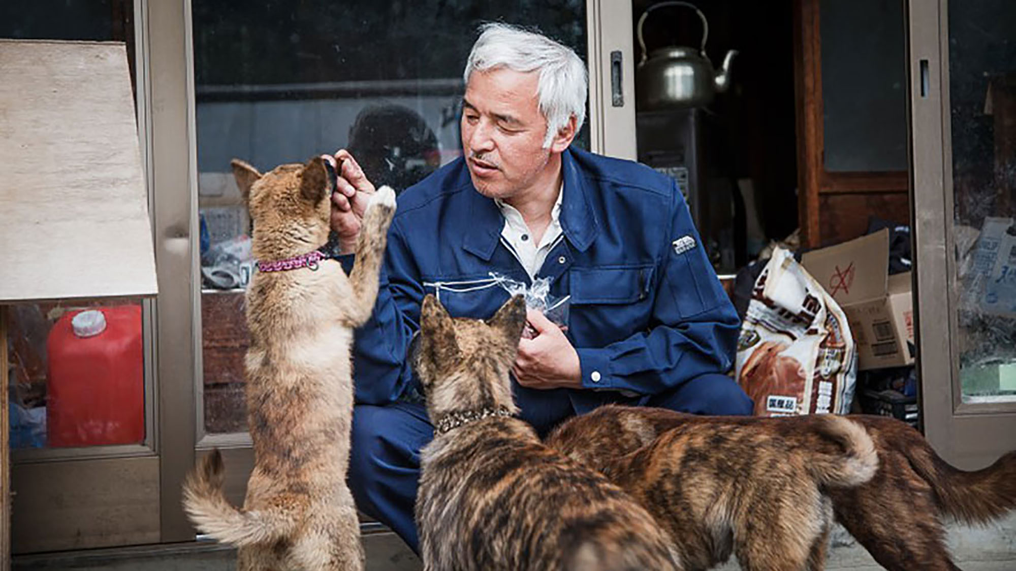 """Meet the """"radioactive"""" man who returned to Fukushima to feed the animals that were left behind"""