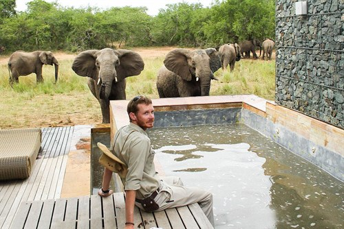 Elephant Pool3