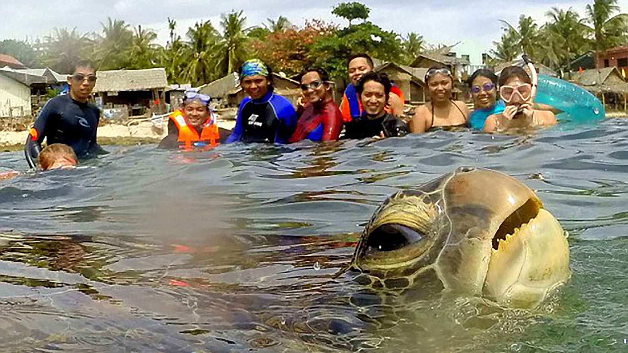 You have to see this sea turtle photo-bombing tourists to believe it!