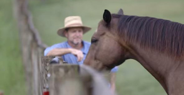 Prisoners and retired racehorses give each other hope for a better future