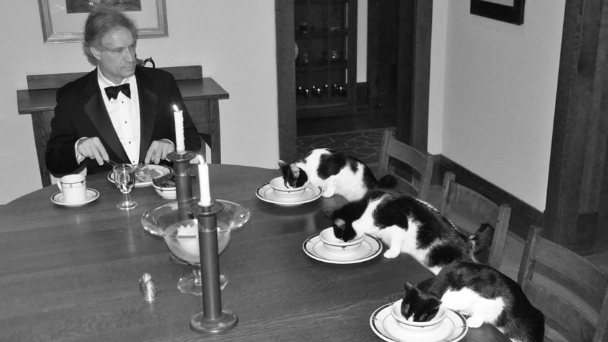 This man has formal dinners with his cats when his wife is away