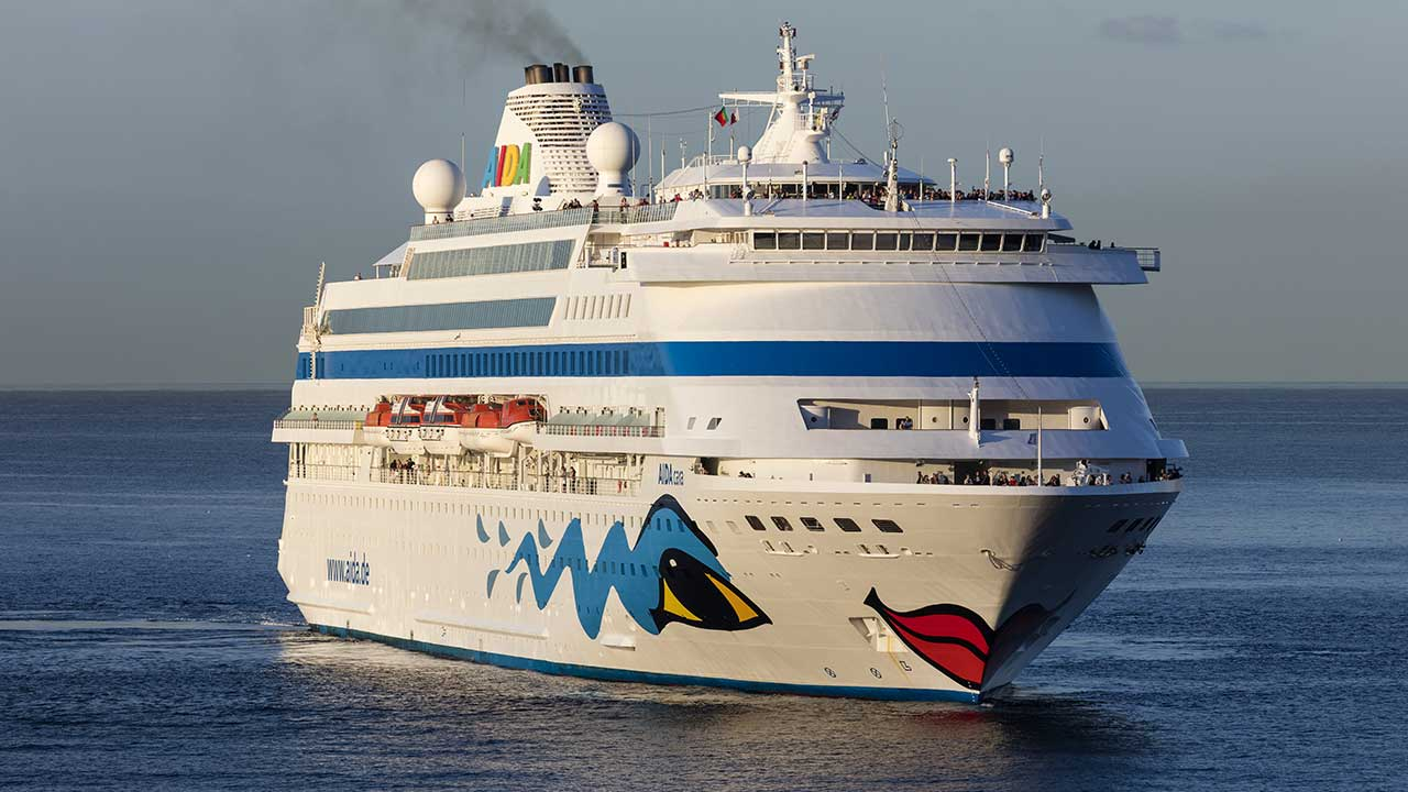 TV star vanishes from cruise ship
