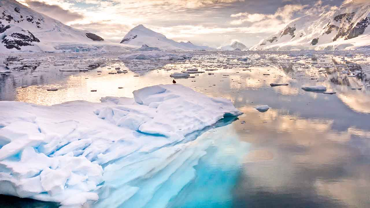 Anatomy of a heatwave: how Antarctica recorded a 20.75°C day last month