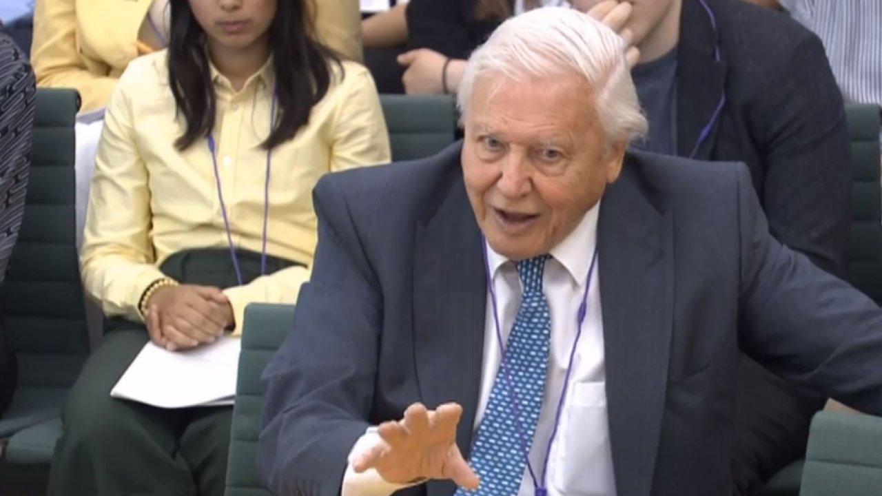 """Extraordinary"": Why Sir David Attenborough has just taken aim at Australia"