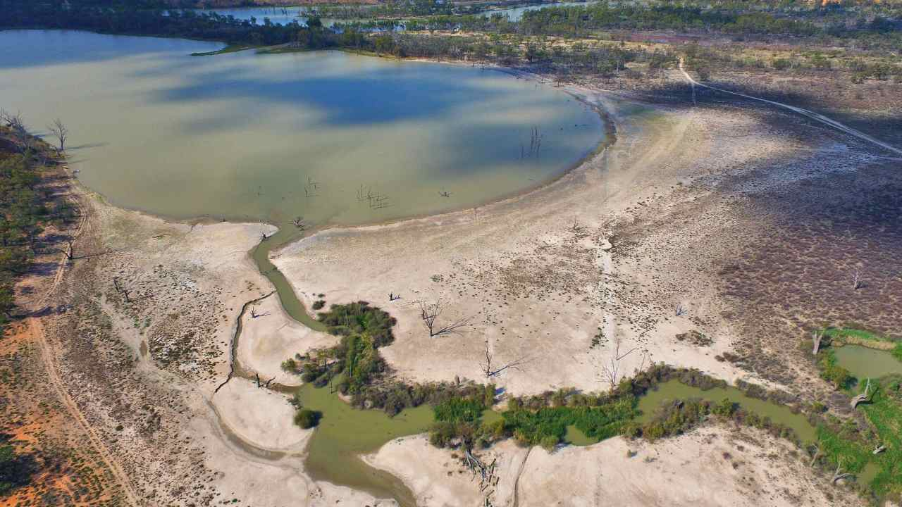 """""""National disgrace"""": Aussie taxpayers fork out $40 million to expand irrigation in the Murray-Darling Basin"""