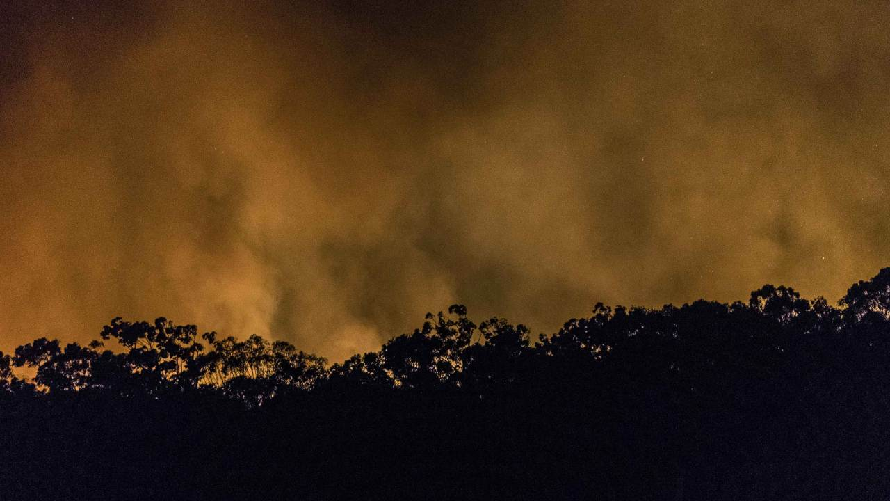 """""""It is disgusting"""": Deputy PM calls out Greens member for linking bushfires to climate change"""