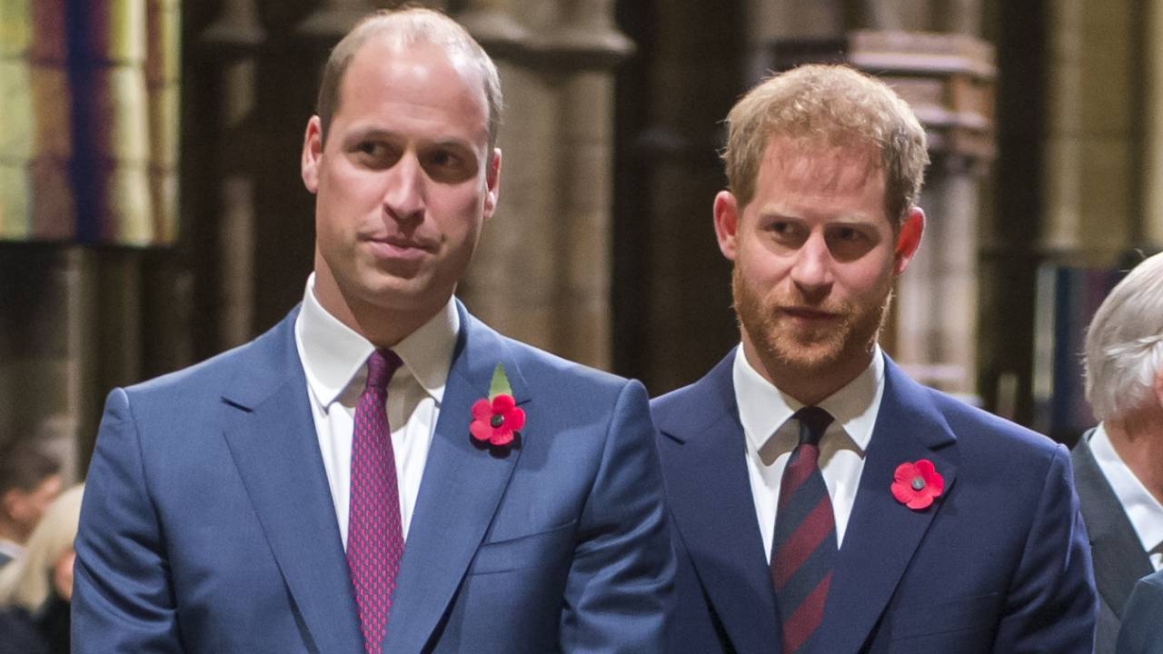 Prince Harry and William stand together against false claims
