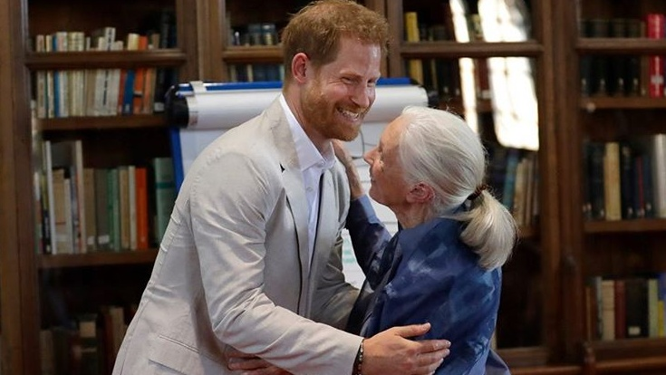 "Dr Jane Goodall reveals Prince Harry is finding new LA life ""challenging"""