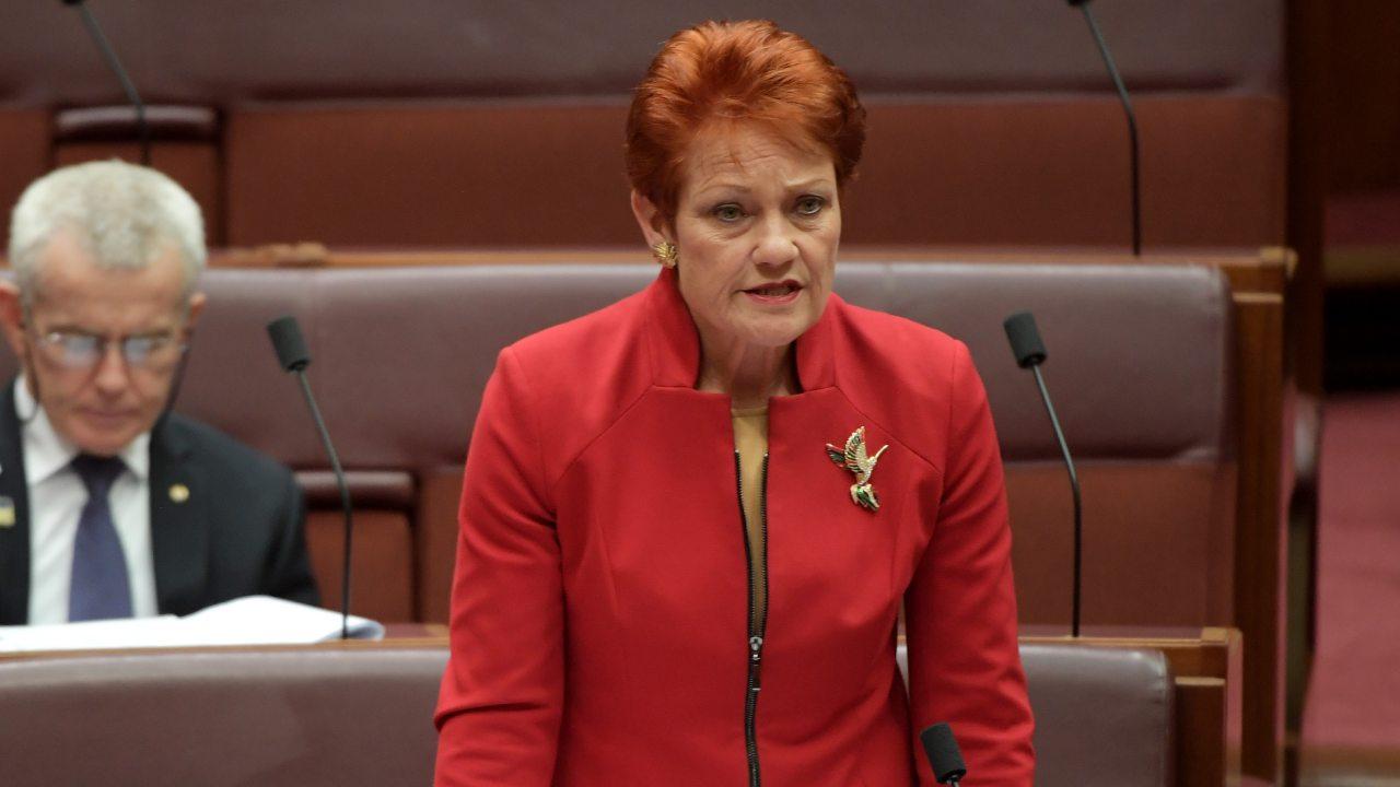 Pauline Hanson launches GoFundMe page to battle QLD border closures