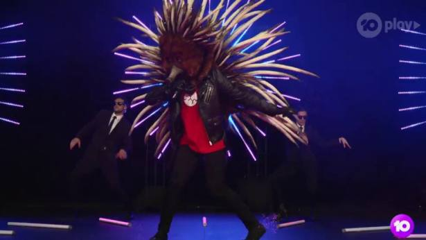 Masked Singer's Echidna revealed on first night
