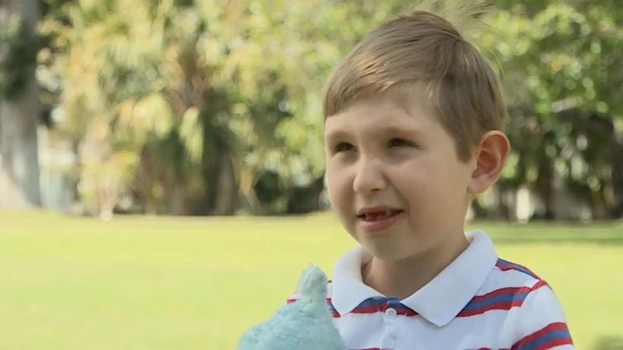 World's tiniest hero? Boy hailed for saving grandmother's life