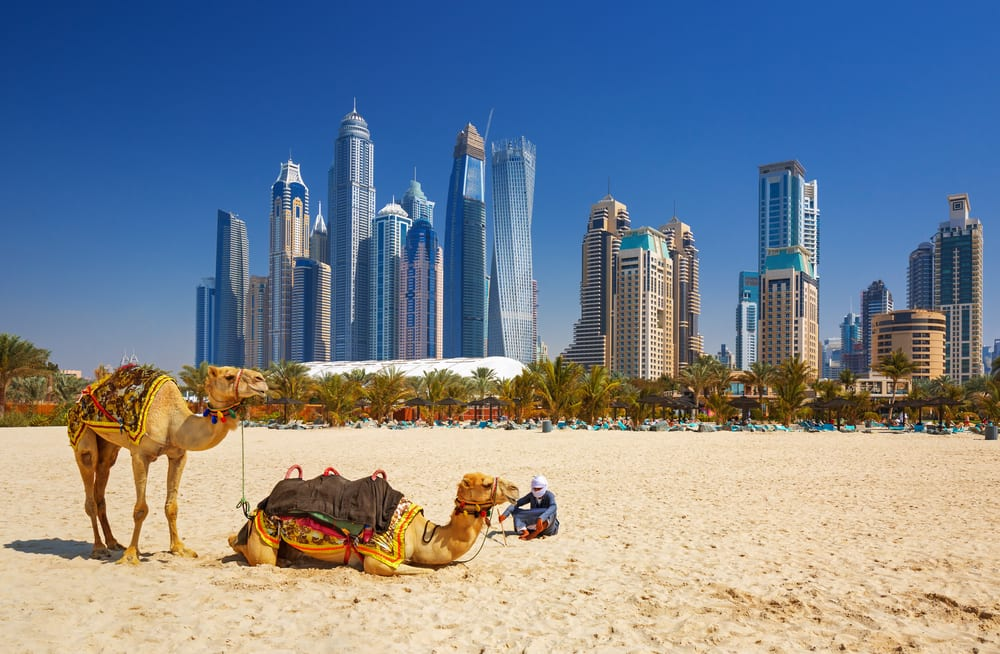Top things to do in Dubai with your grandkids