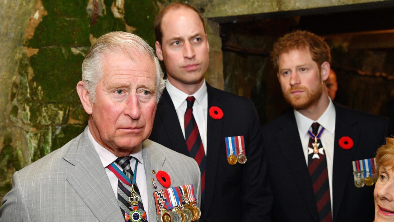 """Peace talks between Harry, Prince Charles and William """"didn't go as hoped"""""""