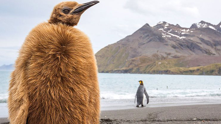 This is the most remote place on Earth
