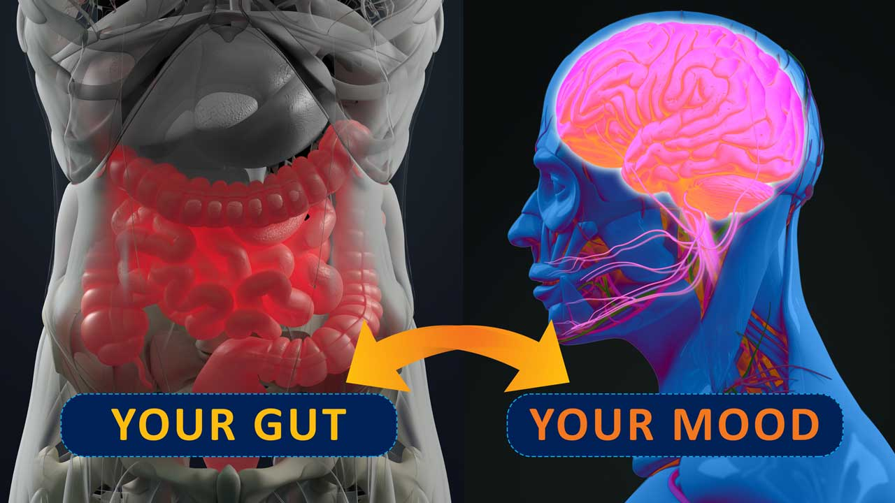 How gut bacteria could affect your mental health