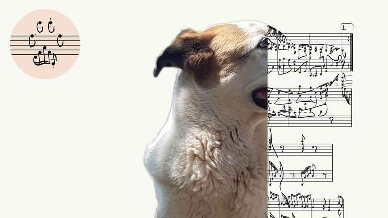 Memorialise your pet in a musical portrait
