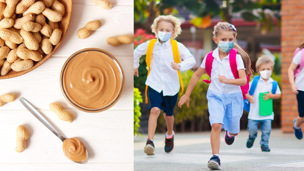 Could nuts in schools be making a comeback?