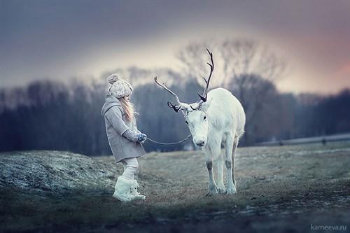 Animal -children -photography -elena -karneeva -322__880